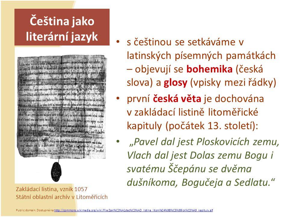 Čeština jako literární jazyk s češtinou se setkáváme v latinských písemných památkách – objevují se bohemika (česká slova) a glosy (vpisky mezi řádky)
