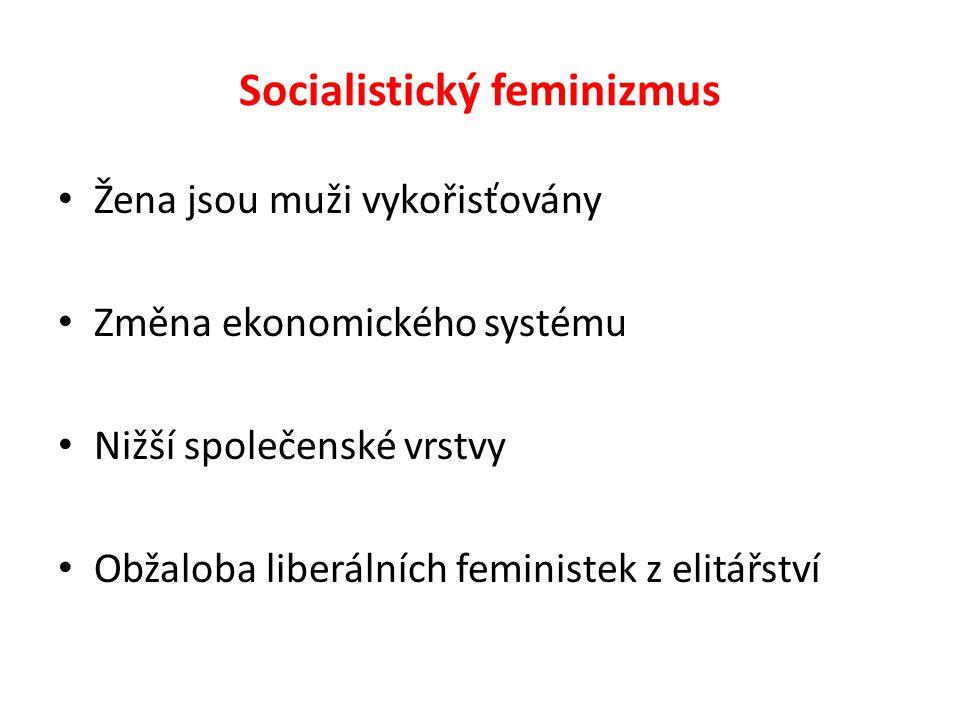 Socialistický feminizmus Žena jsou muži vykořisťovány Změna ekonomického systému Nižší společenské vrstvy Obžaloba liberálních feministek z elitářství