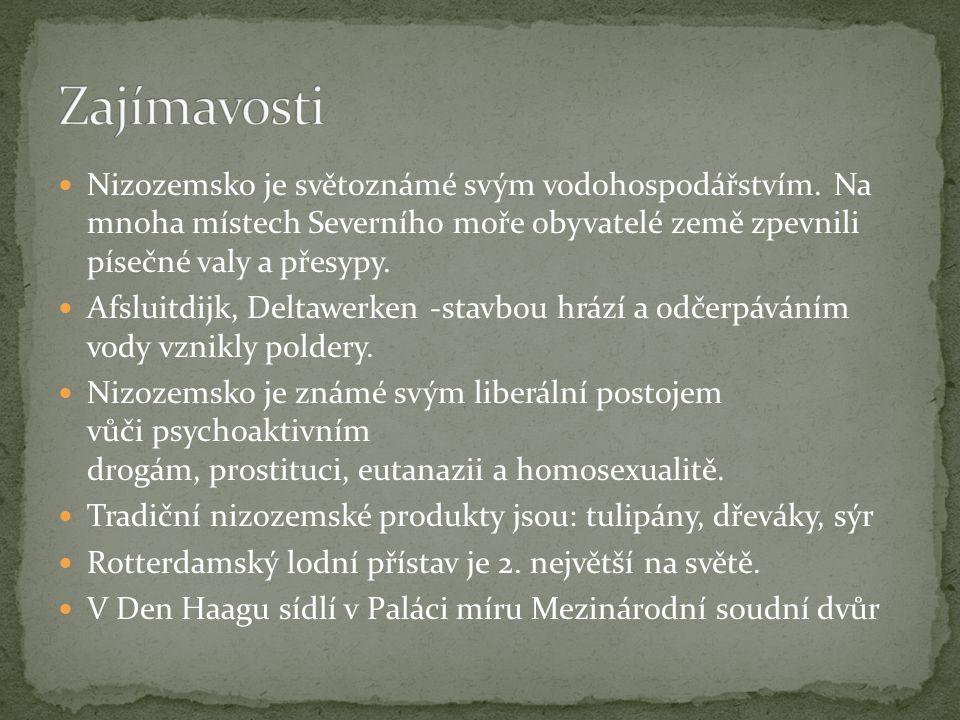 Obr,1-NUCLEARVACUUM.wikipedia [online]. [cit. 29.5.2013].