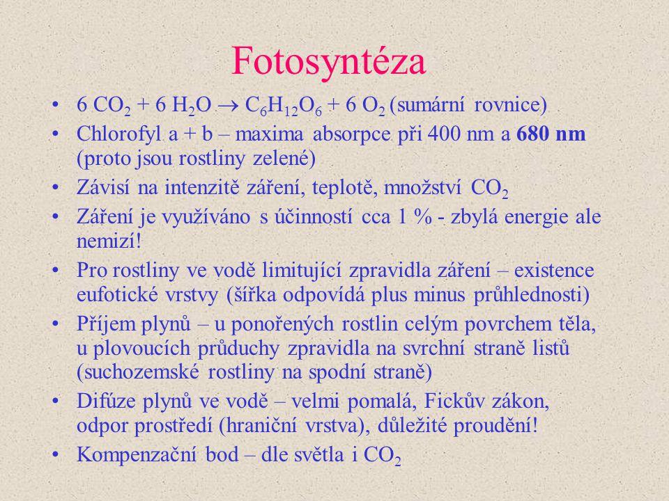 Fotosyntéza 6 CO 2 + 6 H 2 O  C 6 H 12 O 6 + 6 O 2 (sumární rovnice) Chlorofyl a + b – maxima absorpce při 400 nm a 680 nm (proto jsou rostliny zelen