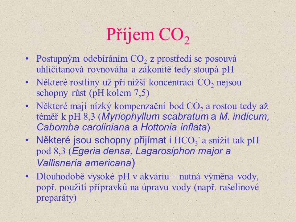 Příjem CO 2 Postupným odebíráním CO 2 z prostředí se posouvá uhličitanová rovnováha a zákonitě tedy stoupá pH Některé rostliny už při nižší koncentrac