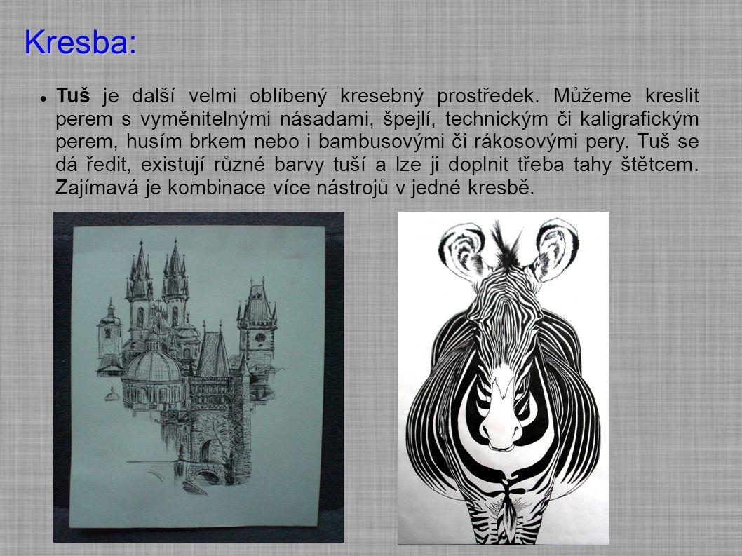 Kresba: Tuš je další velmi oblíbený kresebný prostředek. Můžeme kreslit perem s vyměnitelnými násadami, špejlí, technickým či kaligrafickým perem, hus