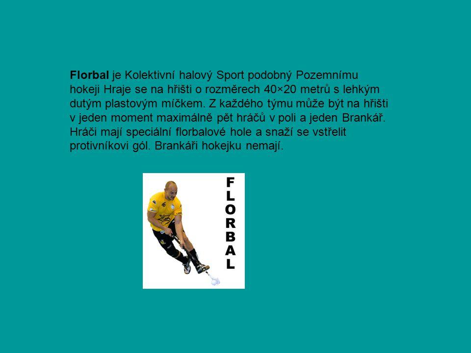 Florbal je Kolektivní halový Sport podobný Pozemnímu hokeji Hraje se na hřišti o rozměrech 40×20 metrů s lehkým dutým plastovým míčkem. Z každého týmu
