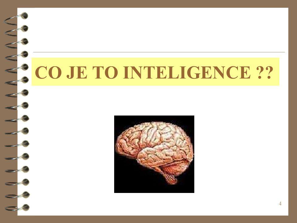 4 CO JE TO INTELIGENCE ??