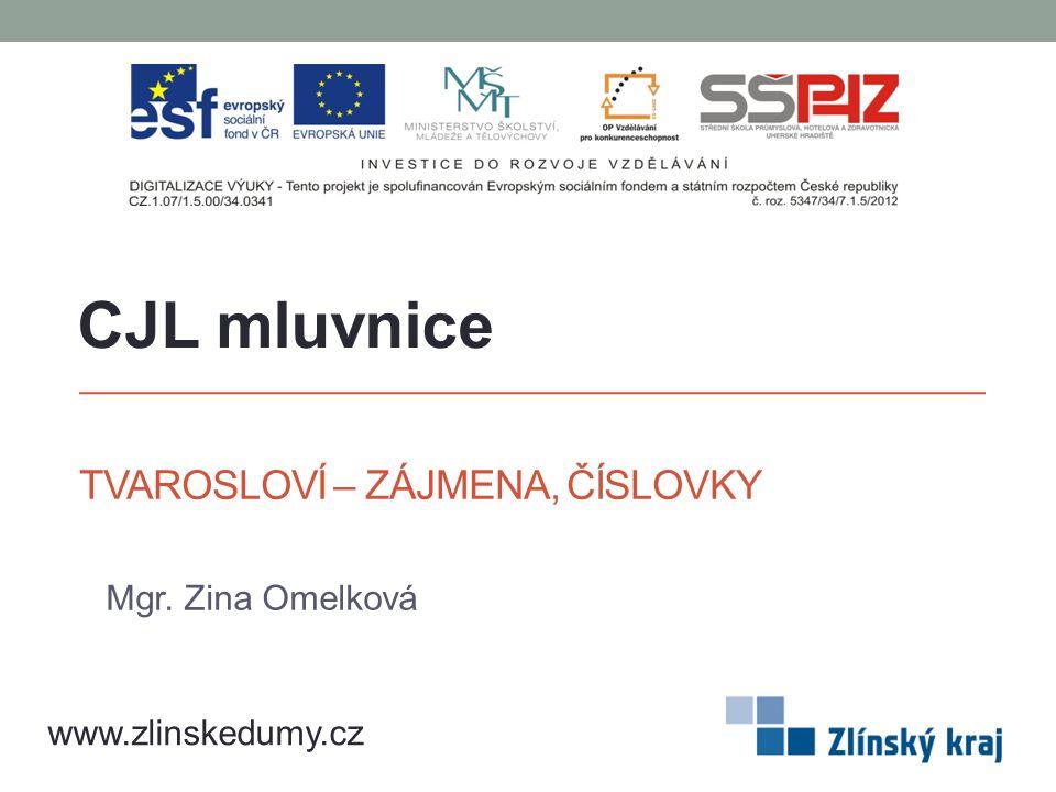 TVAROSLOVÍ – ZÁJMENA, ČÍSLOVKY Mgr. Zina Omelková CJL mluvnice www.zlinskedumy.cz