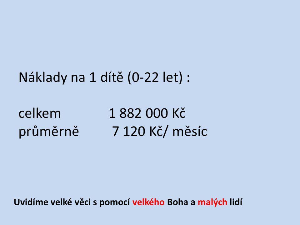 Náklady na 1 dítě (0-22 let) : celkem 1 882 000 Kč průměrně 7 120 Kč/ měsíc Uvidíme velké věci s pomocí velkého Boha a malých lidí