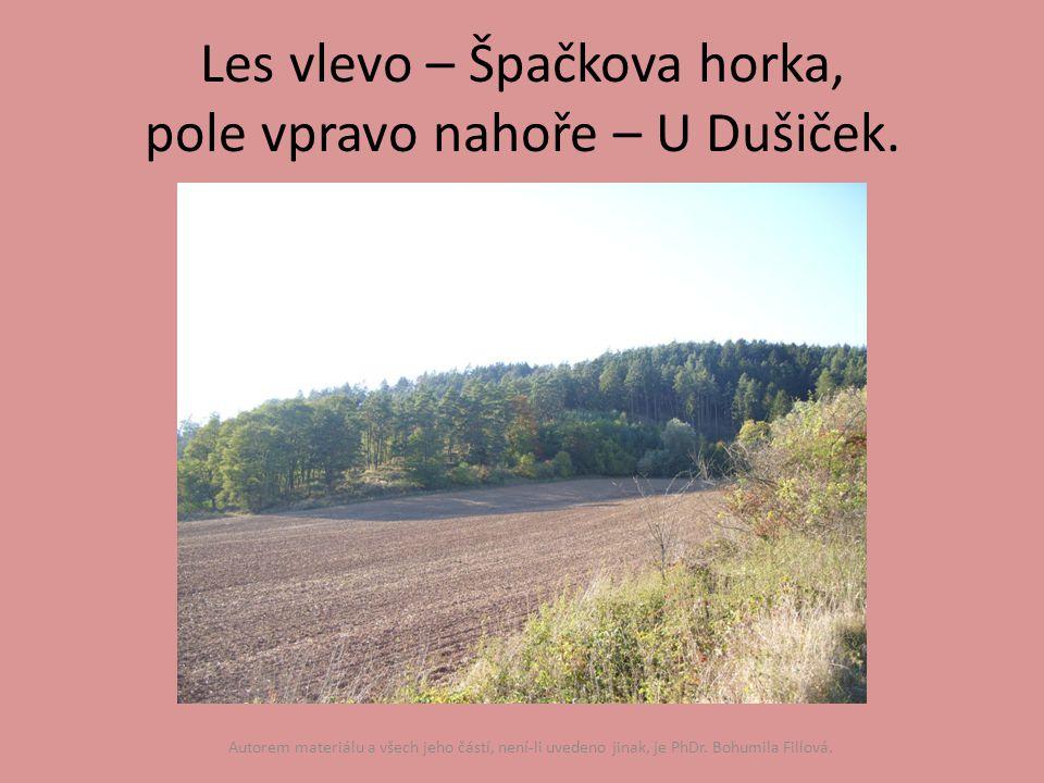 Les vlevo – Špačkova horka, pole vpravo nahoře – U Dušiček.