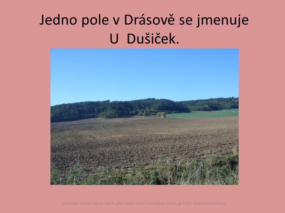 Jedno pole v Drásově se jmenuje U Dušiček.