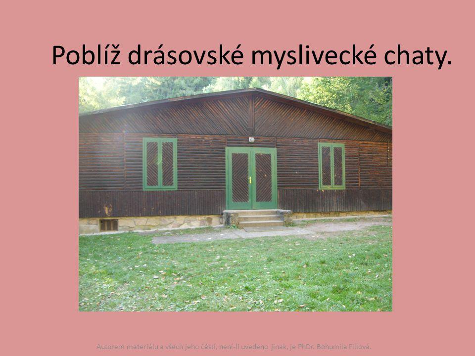 Poblíž drásovské myslivecké chaty.