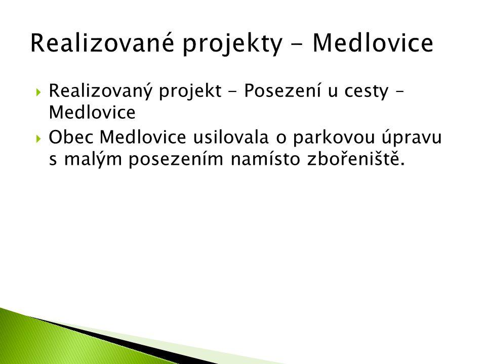 Realizovaný projekt - Posezení u cesty – Medlovice  Obec Medlovice usilovala o parkovou úpravu s malým posezením namísto zbořeniště.