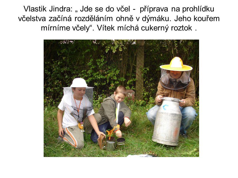 """Vlastik Jindra: """" Jde se do včel - příprava na prohlídku včelstva začíná rozděláním ohně v dýmáku. Jeho kouřem mírníme včely"""". Vítek míchá cukerný roz"""