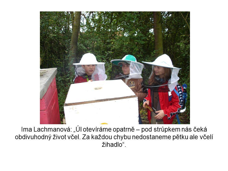 """Ima Lachmanová: """"Úl otevíráme opatrně – pod strůpkem nás čeká obdivuhodný život včel. Za každou chybu nedostaneme pětku ale včelí žihadlo""""."""