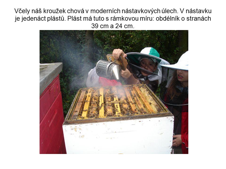 Včely náš kroužek chová v moderních nástavkových úlech. V nástavku je jedenáct plástů. Plást má tuto s rámkovou míru: obdélník o stranách 39 cm a 24 c