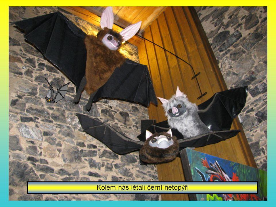 Kolem nás létali černí netopýři