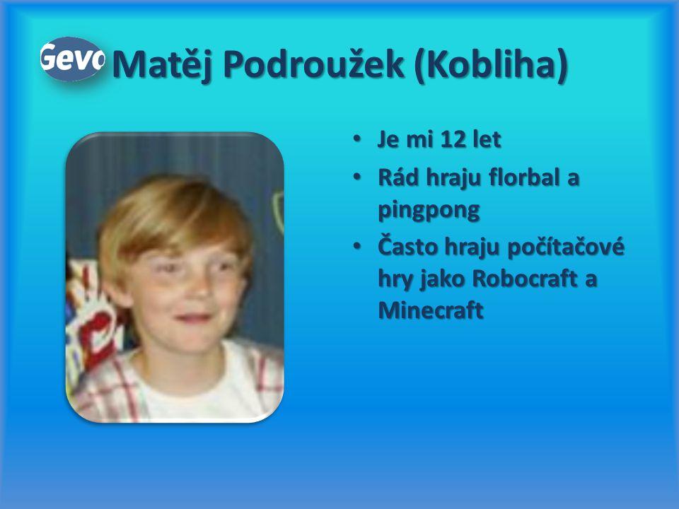 Matěj Podroužek (Kobliha) Rád hraju florbal a pingpong Rád hraju florbal a pingpong Často hraju počítačové hry jako Robocraft a Minecraft Často hraju