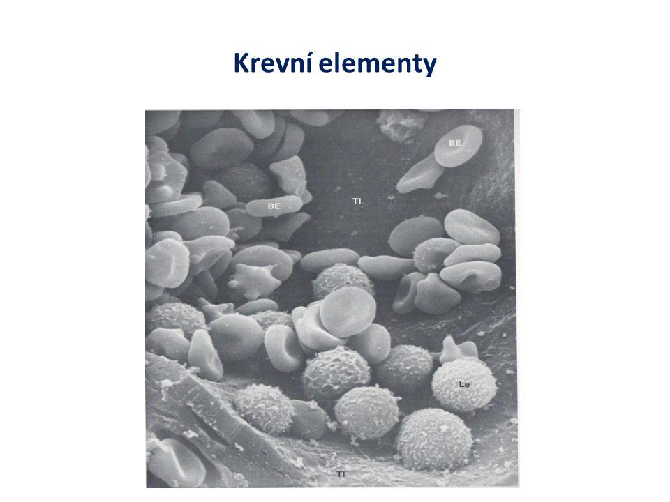Diferenciace příklady strukturálních a funkčních proteinů u některých buněčných typů erytrocyt – hemoglobin řasinková buňka – tubulin a dynein neuron – neurotransmiter, tubulin a kinesin B- buňka pankreatu - insulin