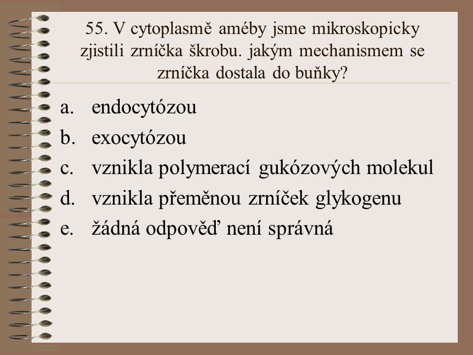 55. V cytoplasmě améby jsme mikroskopicky zjistili zrníčka škrobu. jakým mechanismem se zrníčka dostala do buňky? a.endocytózou b.exocytózou c.vznikla