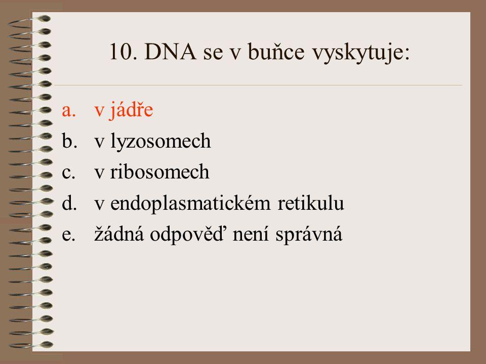 10. DNA se v buňce vyskytuje: a.v jádře b.v lyzosomech c.v ribosomech d.v endoplasmatickém retikulu e.žádná odpověď není správná