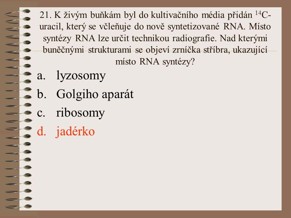 21. K živým buňkám byl do kultivačního média přidán 14 C- uracil, který se včleňuje do nově syntetizované RNA. Místo syntézy RNA lze určit technikou r