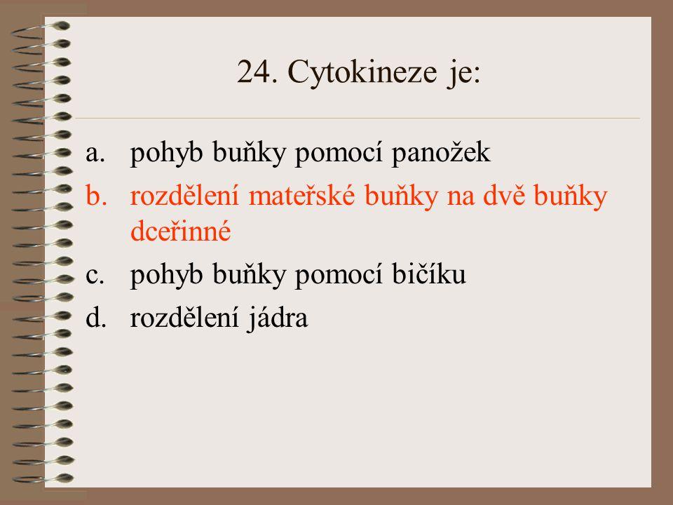 24. Cytokineze je: a.pohyb buňky pomocí panožek b.rozdělení mateřské buňky na dvě buňky dceřinné c.pohyb buňky pomocí bičíku d.rozdělení jádra