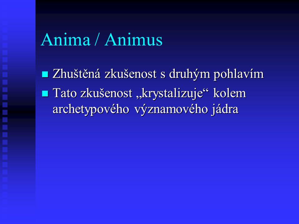 """Anima / Animus Zhuštěná zkušenost s druhým pohlavím Zhuštěná zkušenost s druhým pohlavím Tato zkušenost """"krystalizuje"""" kolem archetypového významového"""