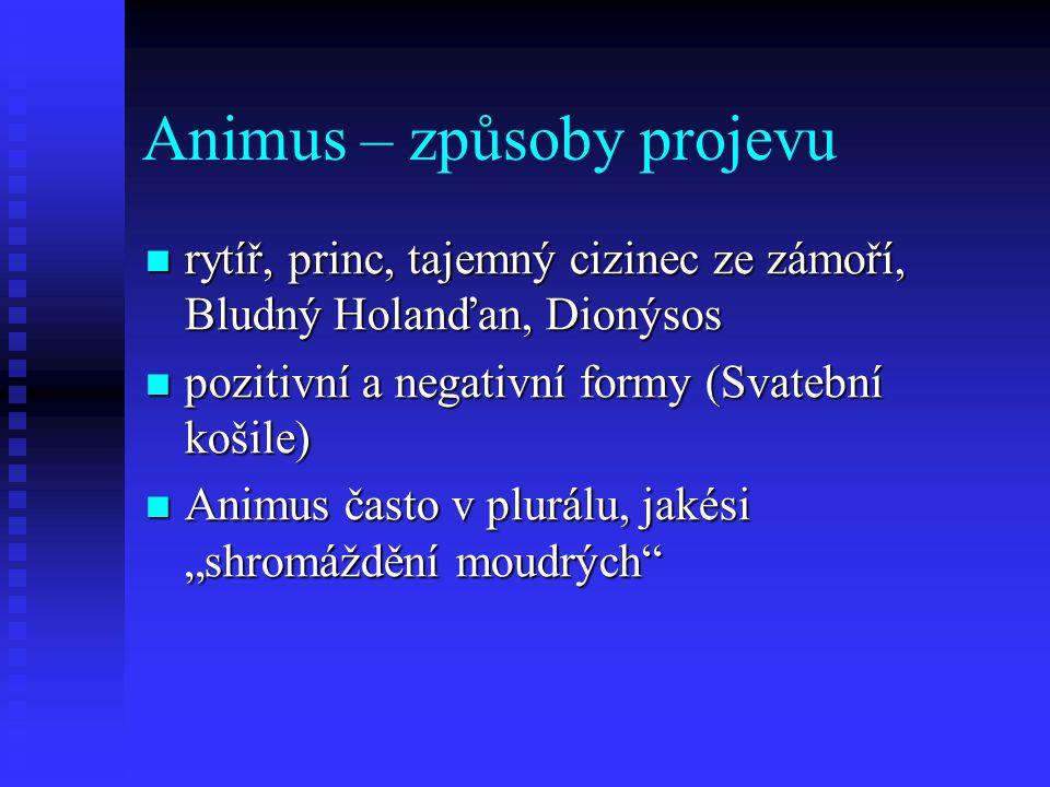 Animus – způsoby projevu rytíř, princ, tajemný cizinec ze zámoří, Bludný Holanďan, Dionýsos rytíř, princ, tajemný cizinec ze zámoří, Bludný Holanďan,