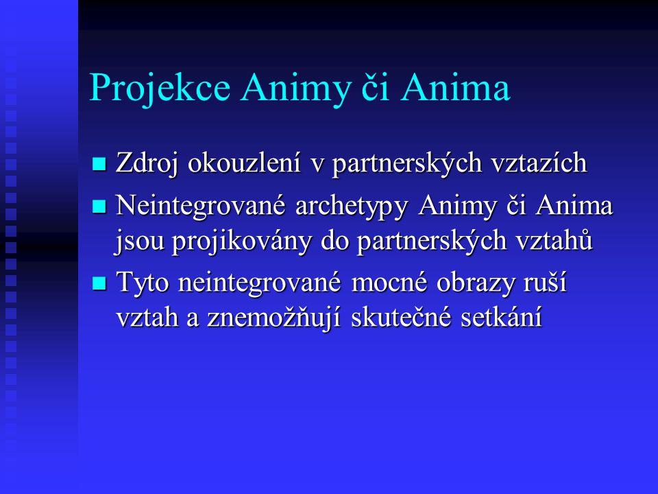 Projekce Animy či Anima Zdroj okouzlení v partnerských vztazích Zdroj okouzlení v partnerských vztazích Neintegrované archetypy Animy či Anima jsou pr