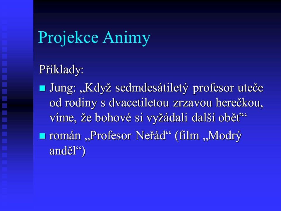 """Projekce Animy Příklady: Jung: """"Když sedmdesátiletý profesor uteče od rodiny s dvacetiletou zrzavou herečkou, víme, že bohové si vyžádali další oběť"""""""