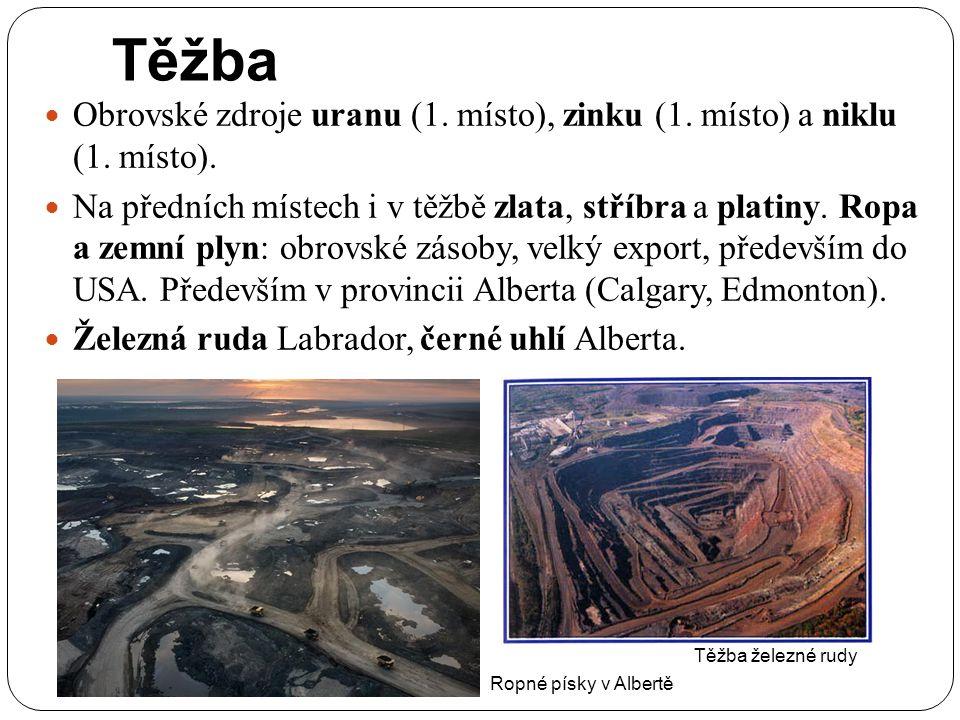 Těžba Obrovské zdroje uranu (1. místo), zinku (1. místo) a niklu (1. místo). Na předních místech i v těžbě zlata, stříbra a platiny. Ropa a zemní plyn