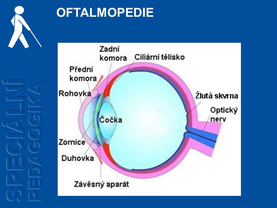 OFTALMOPEDIE