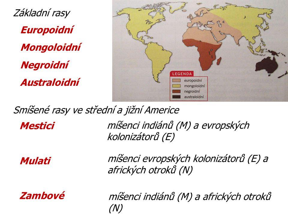 Základní rasy Smíšené rasy ve střední a jižní Americe Europoidní Mongoloidní Negroidní Australoidní Mestici Mulati Zambové míšenci indiánů (M) a evrop