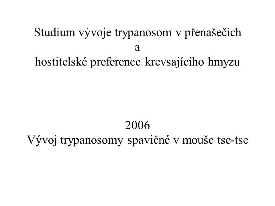 Studium vývoje trypanosom v přenašečích a hostitelské preference krevsajícího hmyzu 2006 Vývoj trypanosomy spavičné v mouše tse-tse