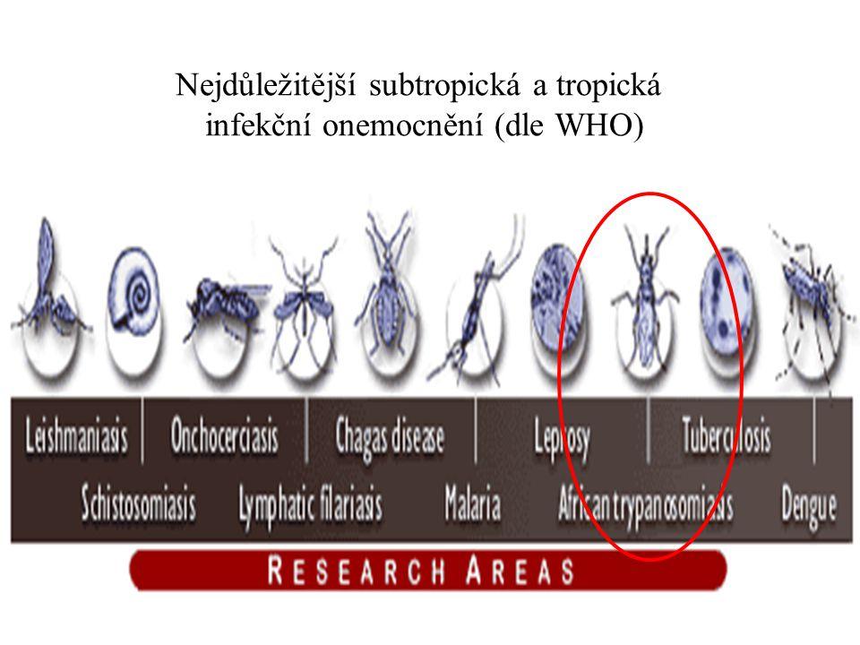 Nejdůležitější subtropická a tropická infekční onemocnění (dle WHO)