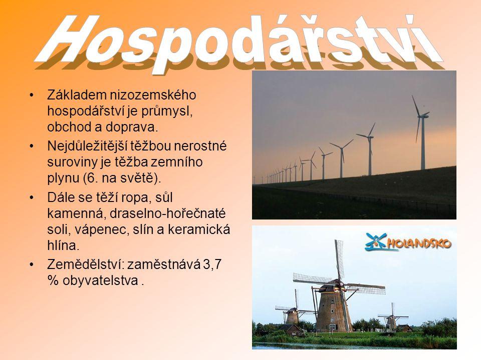 Základem nizozemského hospodářství je průmysl, obchod a doprava. Nejdůležitější těžbou nerostné suroviny je těžba zemního plynu (6. na světě). Dále se