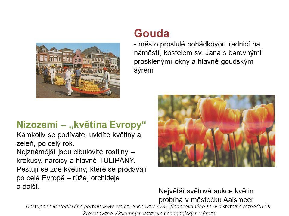 Gouda - město proslulé pohádkovou radnicí na náměstí, kostelem sv.
