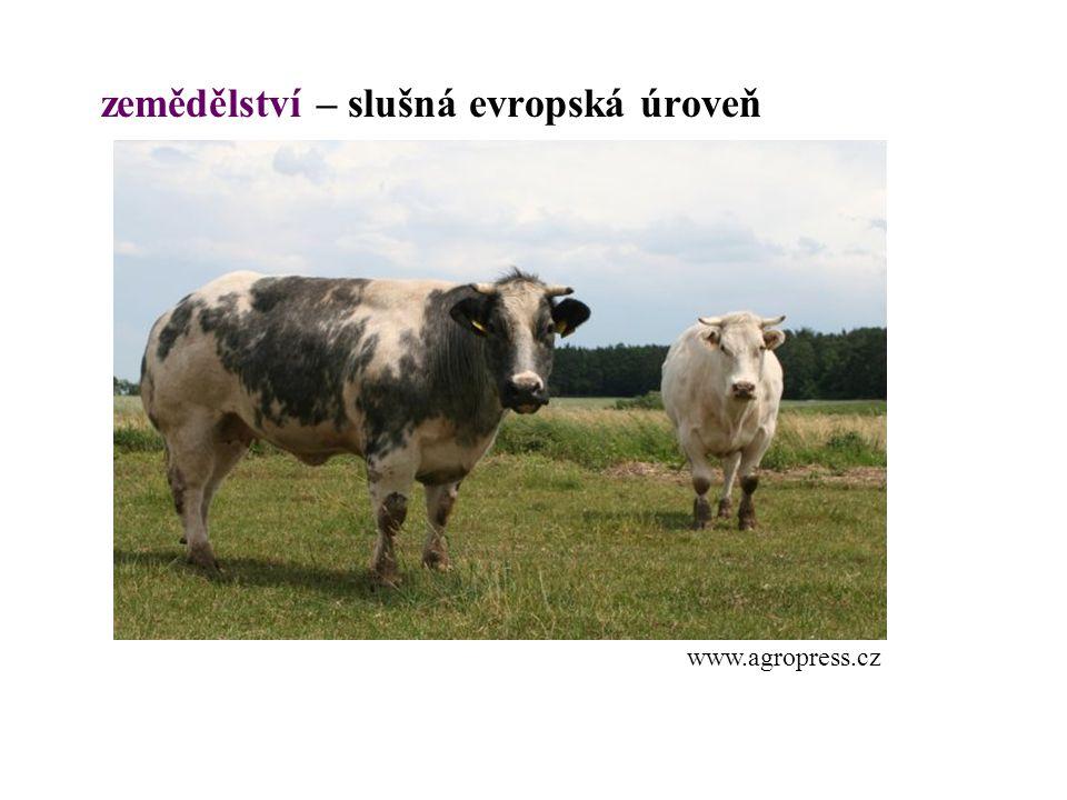 zemědělství – slušná evropská úroveň www.agropress.cz