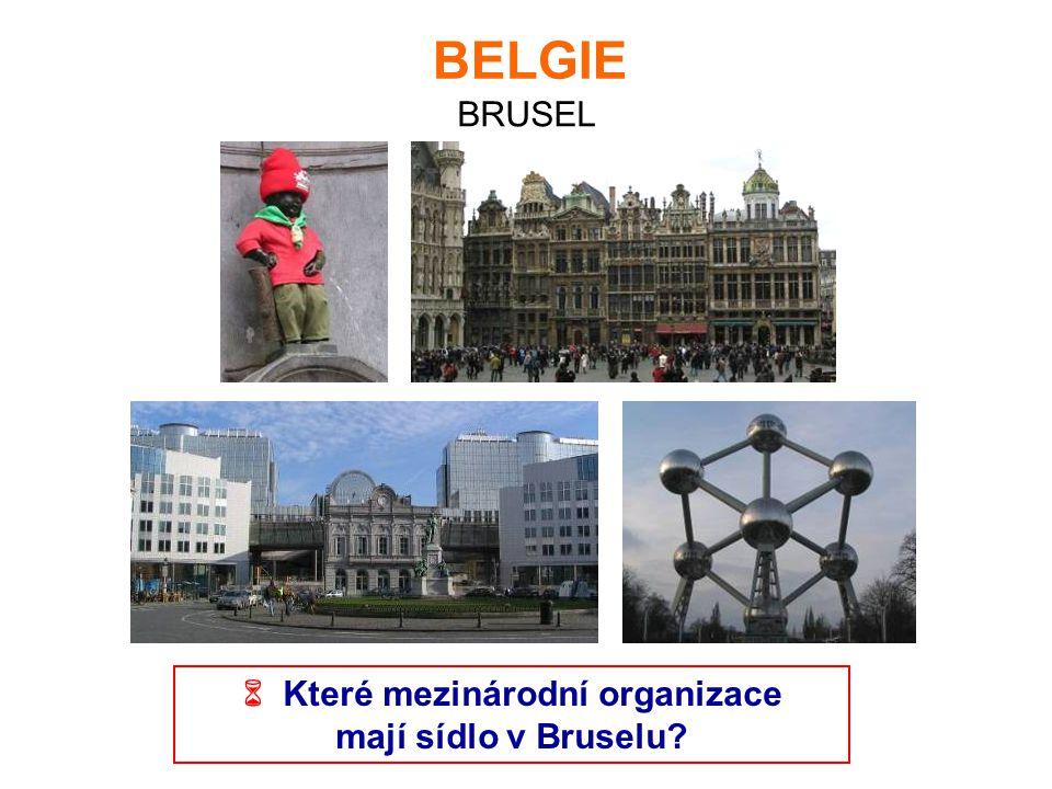 BELGIE BRUSEL  Které mezinárodní organizace mají sídlo v Bruselu?