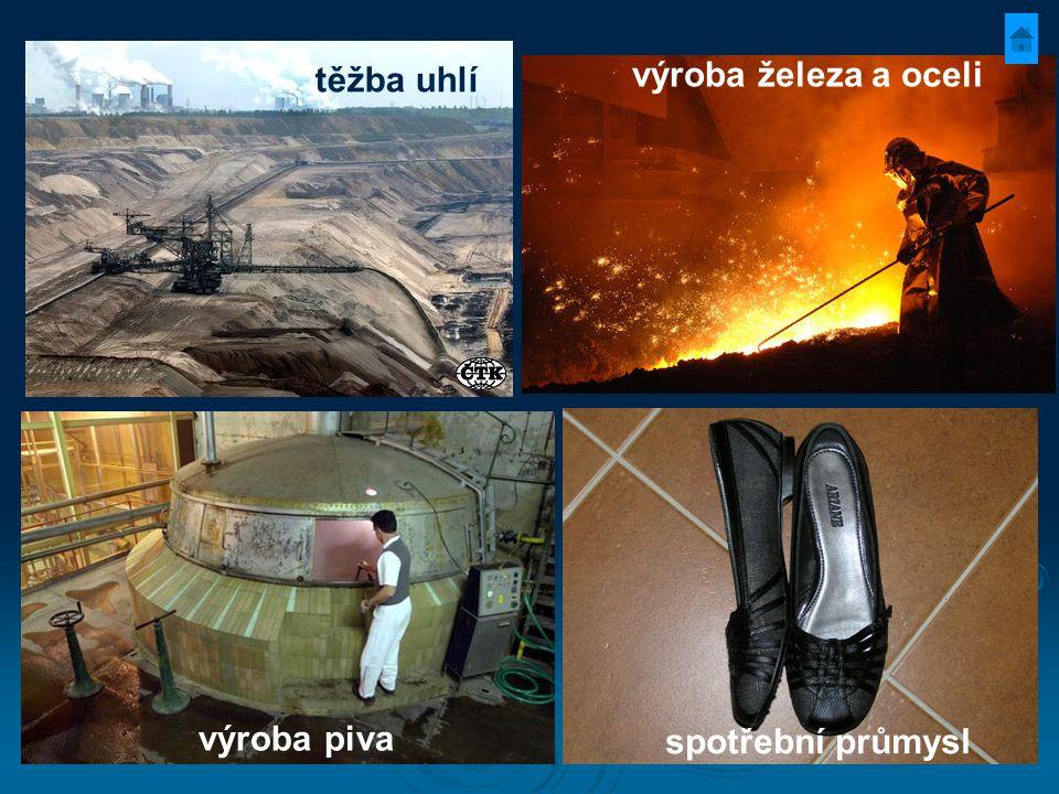 těžba uhlí spotřební průmysl výroba piva výroba železa a oceli
