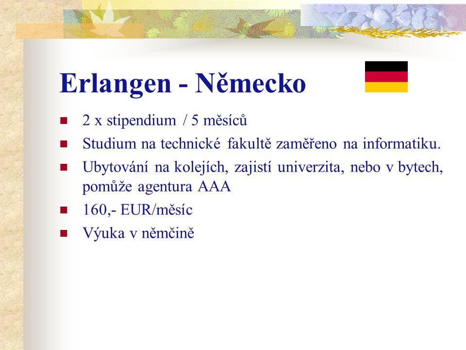 Erlangen - Německo 2 x stipendium / 5 měsíců Studium na technické fakultě zaměřeno na informatiku.