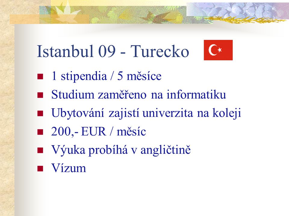Istanbul 09 - Turecko 1 stipendia / 5 měsíce Studium zaměřeno na informatiku Ubytování zajistí univerzita na koleji 200,- EUR / měsíc Výuka probíhá v angličtině Vízum