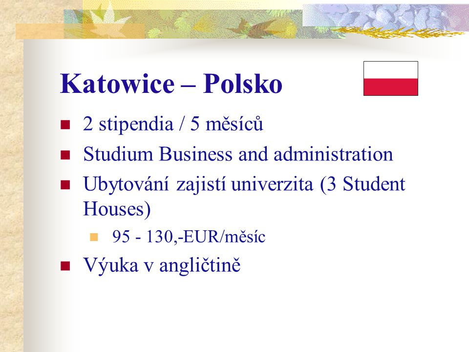Katowice – Polsko 2 stipendia / 5 měsíců Studium Business and administration Ubytování zajistí univerzita (3 Student Houses) 95 - 130,-EUR/měsíc Výuka v angličtině