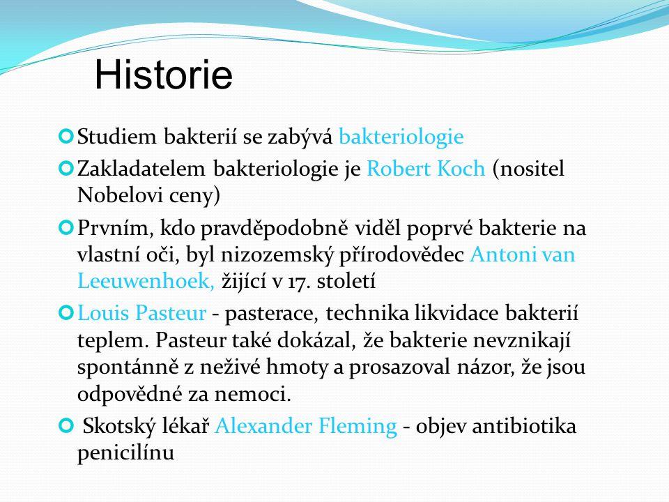 Studiem bakterií se zabývá bakteriologie Zakladatelem bakteriologie je Robert Koch (nositel Nobelovi ceny) Prvním, kdo pravděpodobně viděl poprvé bakt