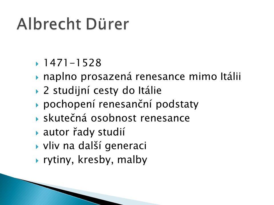  1471-1528  naplno prosazená renesance mimo Itálii  2 studijní cesty do Itálie  pochopení renesanční podstaty  skutečná osobnost renesance  auto
