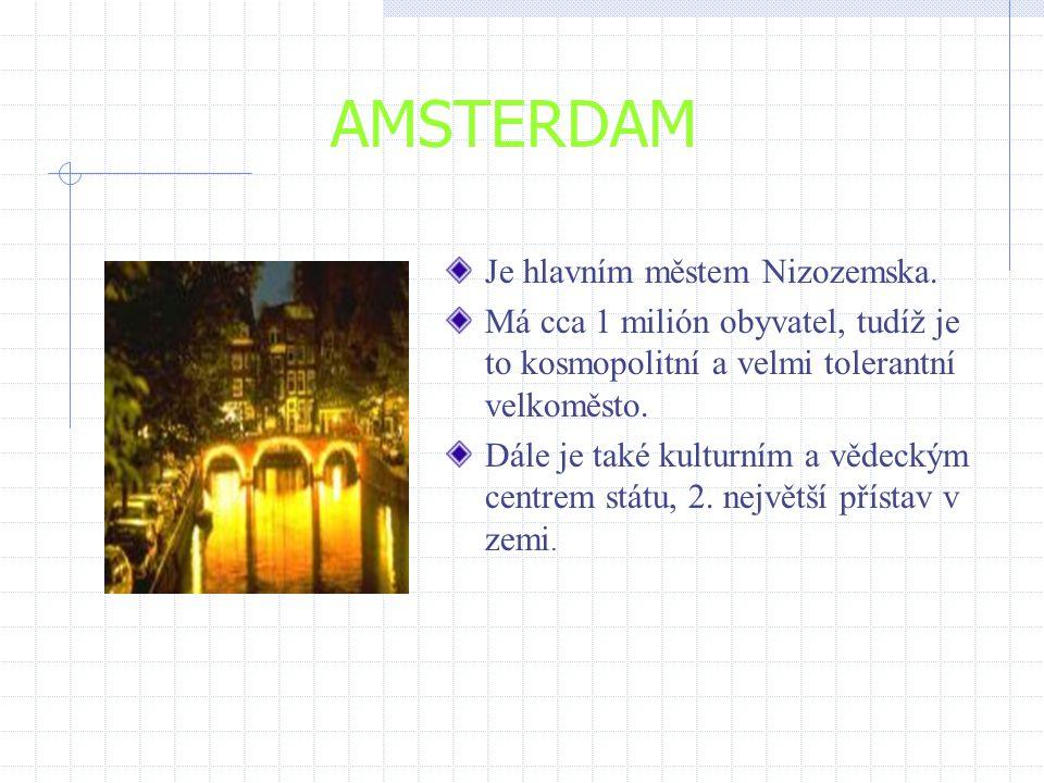 NĚCO O STÁTU... Hlavní město:Amsterdam Úřední jazyk: -nizozemština -fríština Měna:EURO Počet obyvatel:16. mil Rozloha:41 526 km2 Státní zřízení:monarc