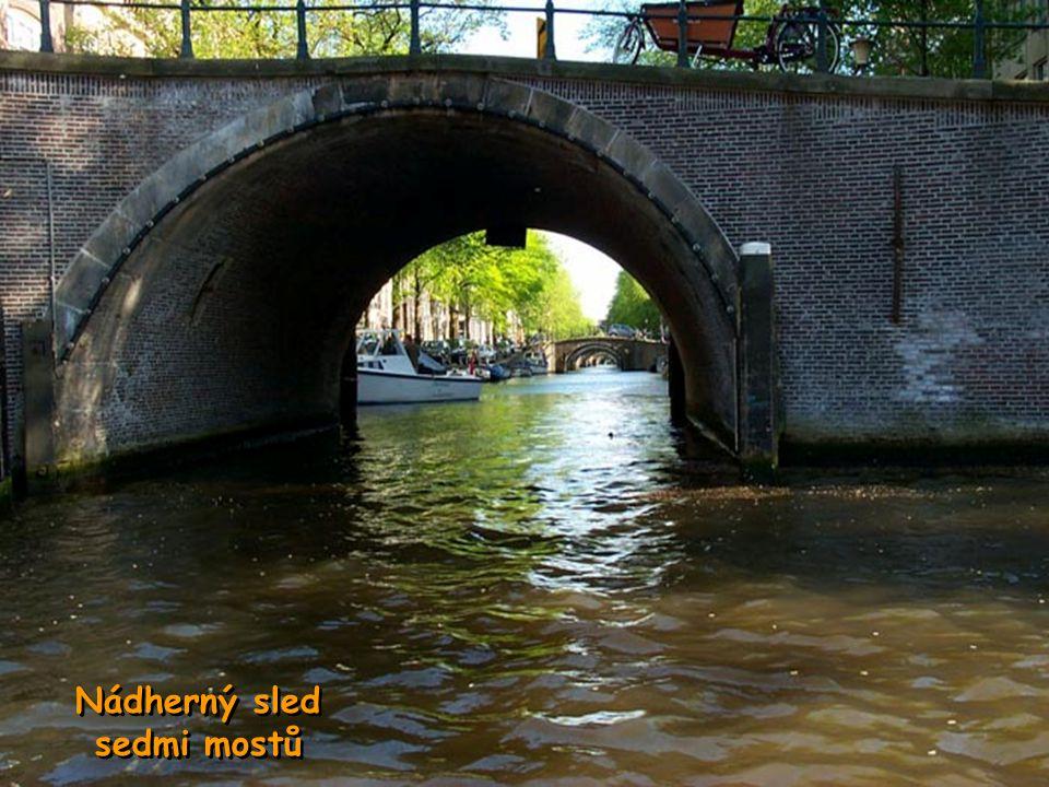 Nizozemsko vypěstuje více než polovinu světové produkce květin.