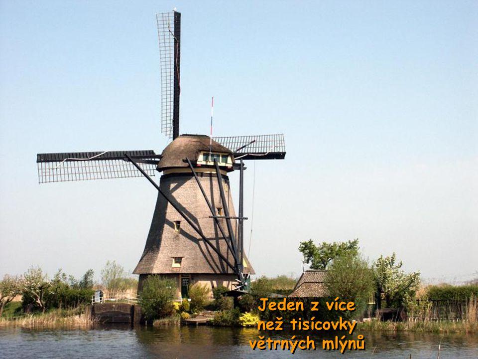 Typický obchod s chutnými sýry z holanských mléčných farem