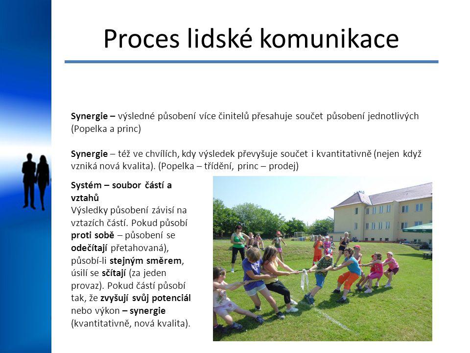 Proces lidské komunikace Synergie – výsledné působení více činitelů přesahuje součet působení jednotlivých (Popelka a princ) Synergie – též ve chvílíc