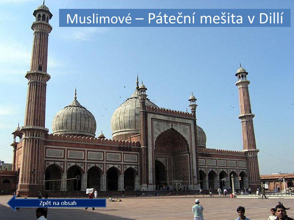 © Letohradské soukromé gymnázium o.p.s. Muslimové – Páteční mešita v Dillí Zpět na obsah