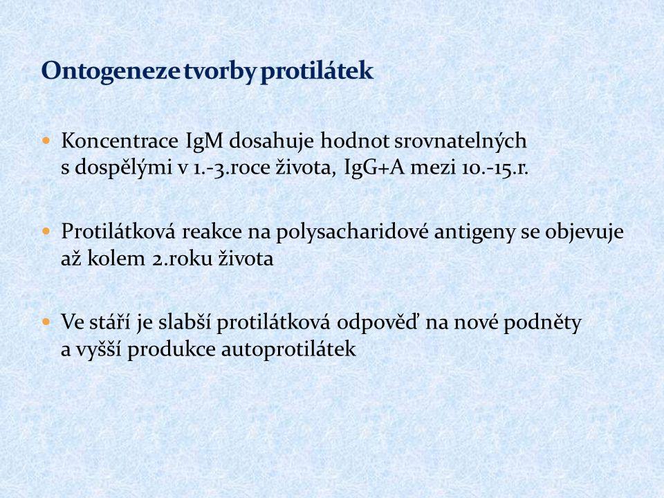 Koncentrace IgM dosahuje hodnot srovnatelných s dospělými v 1.-3.roce života, IgG+A mezi 10.-15.r. Protilátková reakce na polysacharidové antigeny se