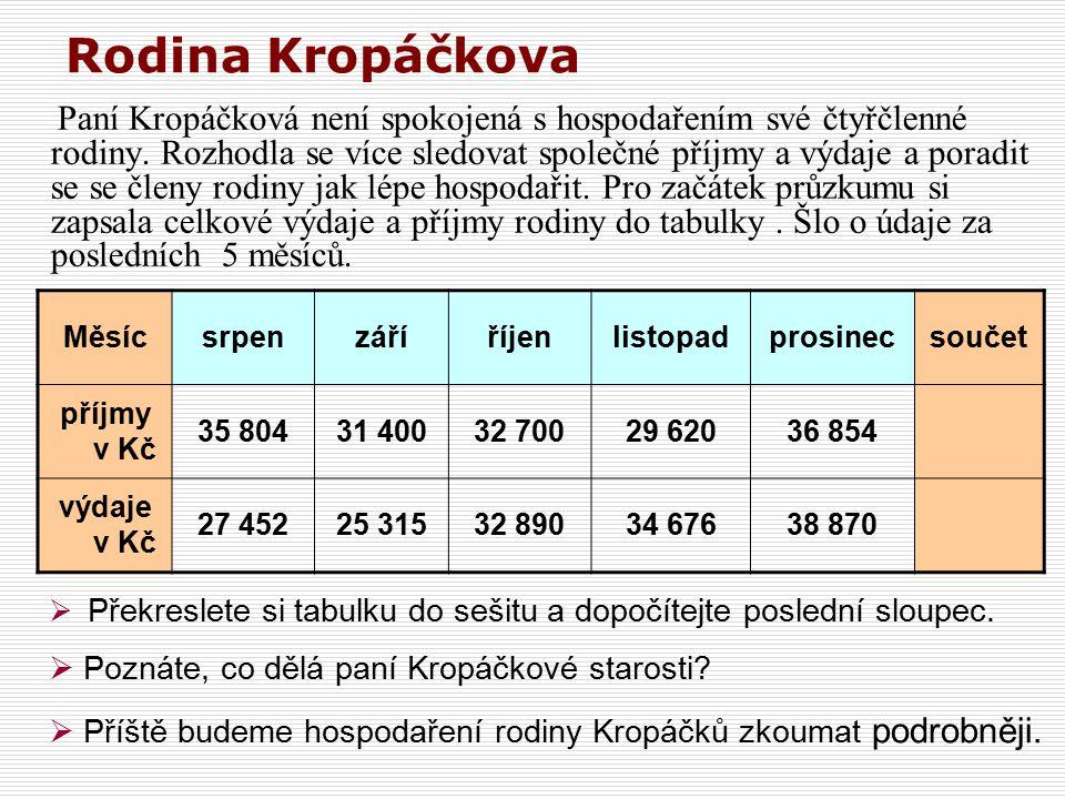 Rodina Kropáčkova Paní Kropáčková není spokojená s hospodařením své čtyřčlenné rodiny.